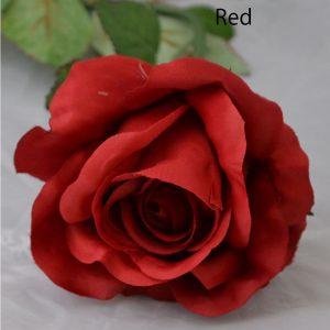 2FL-R1L-Red-H