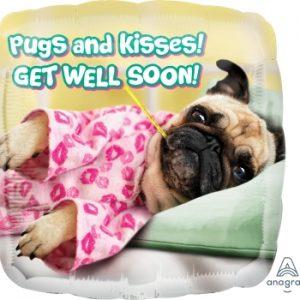 NP06 36592-avanti-get-well-pugs-&-kisses