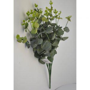 2FL-Leaf-Euc1