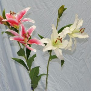 Stem of 3 Headed Lily - 90cm